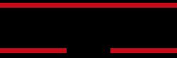 miketyson-academy-logo-black